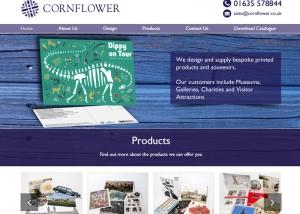 4890e7864 Web Design and E-Commerce Portfolio